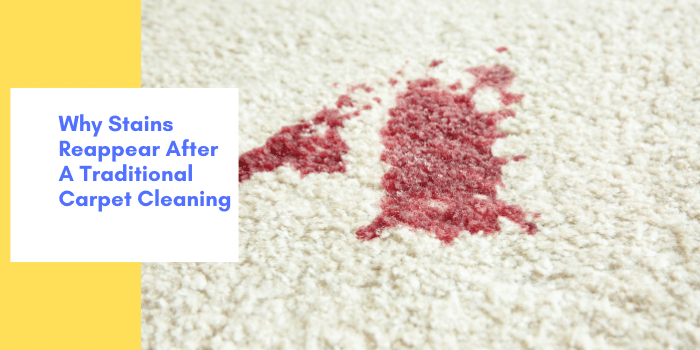 Why Stains Reappear After A Traditional Carpet Cleaning